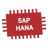 SAP HANA - dlaczego warto wdrożyć przed 2025 rokiem?