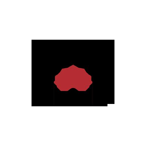 Audyt sieci bezprzewodowej wraz z pomiarami sygnału Wi-Fi